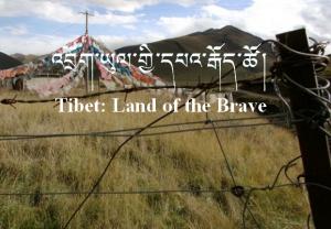 Tibet_LandBrave